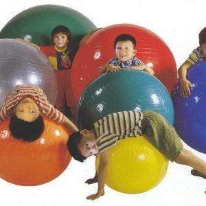 Balon De Gimnasia